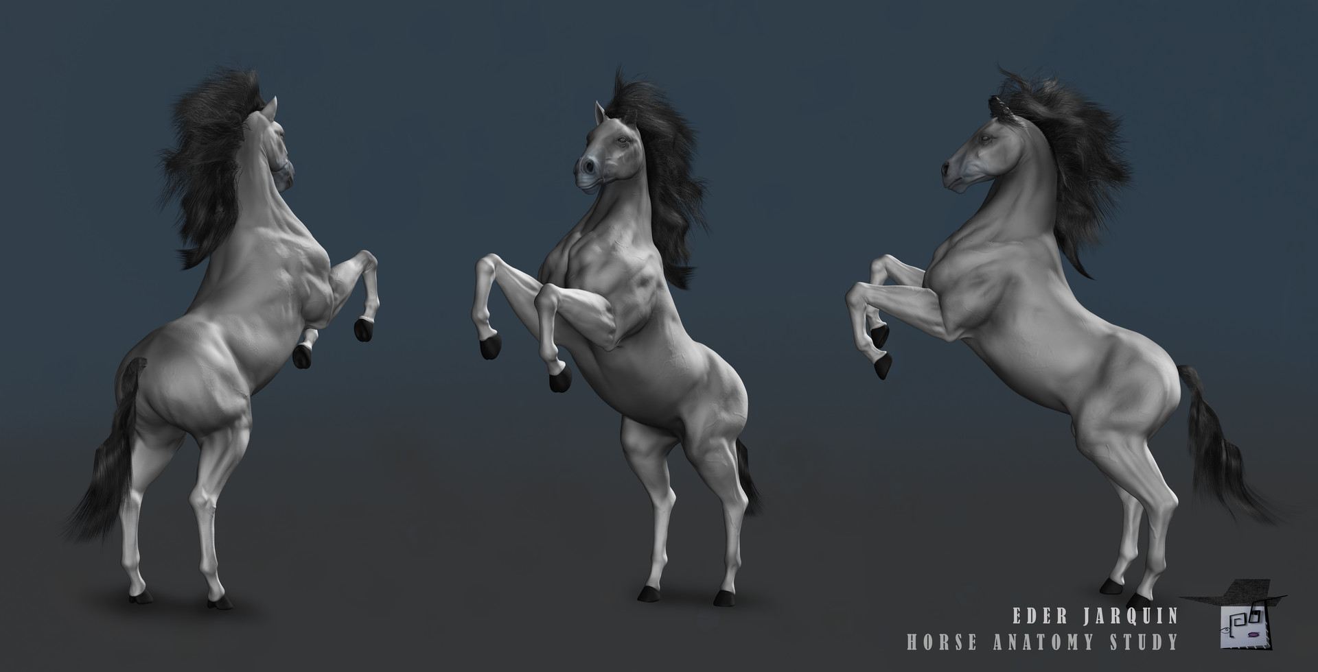 3D Horse Anatomy Software Home Facebook 2503495 - pacte-contre-hulot ...