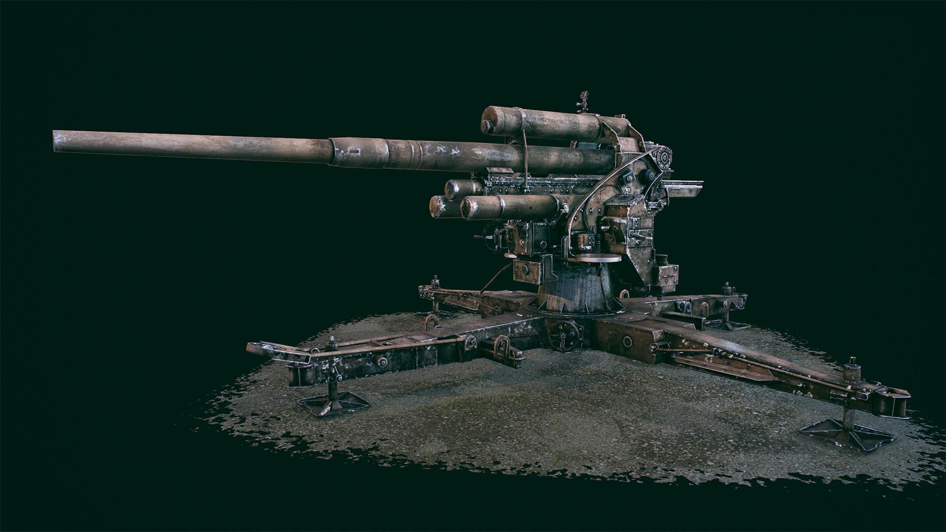 Anna berdnik cannon2