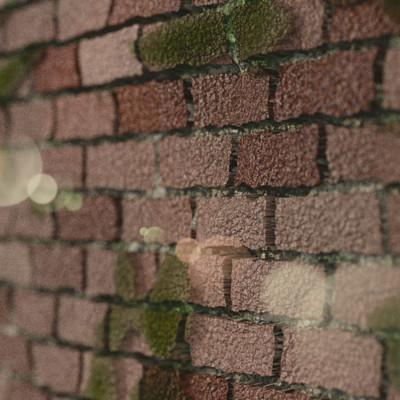 Joel meyer bricks1