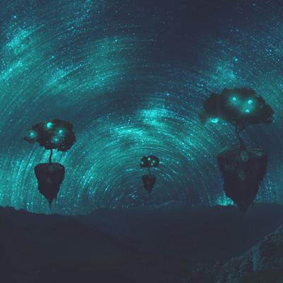 Daniele bianchin night trees