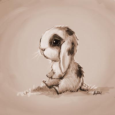 Okan bulbul rabbit01