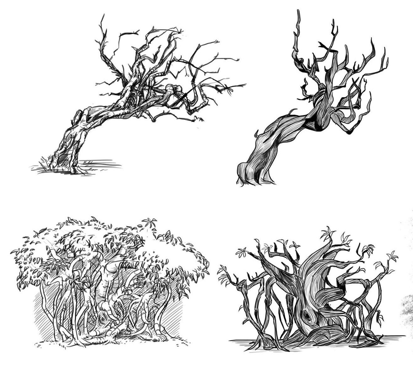 Penny wilkerson bonsai