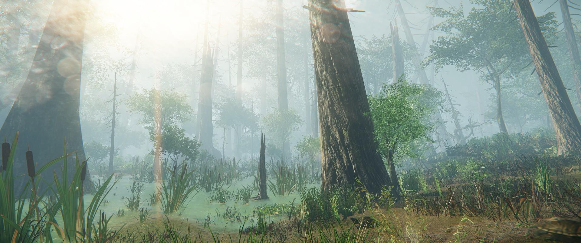 Ashton jensen dead swamp 3