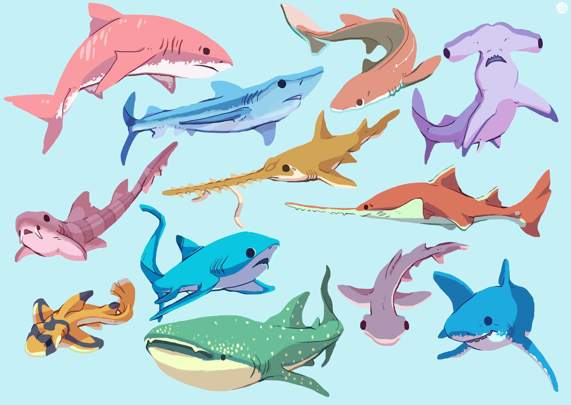 Danielle kruse sharks