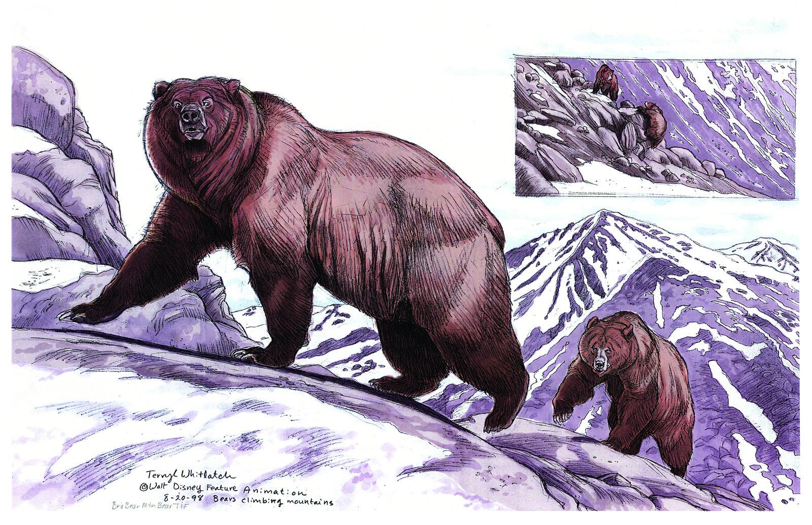 Kenai and older bear