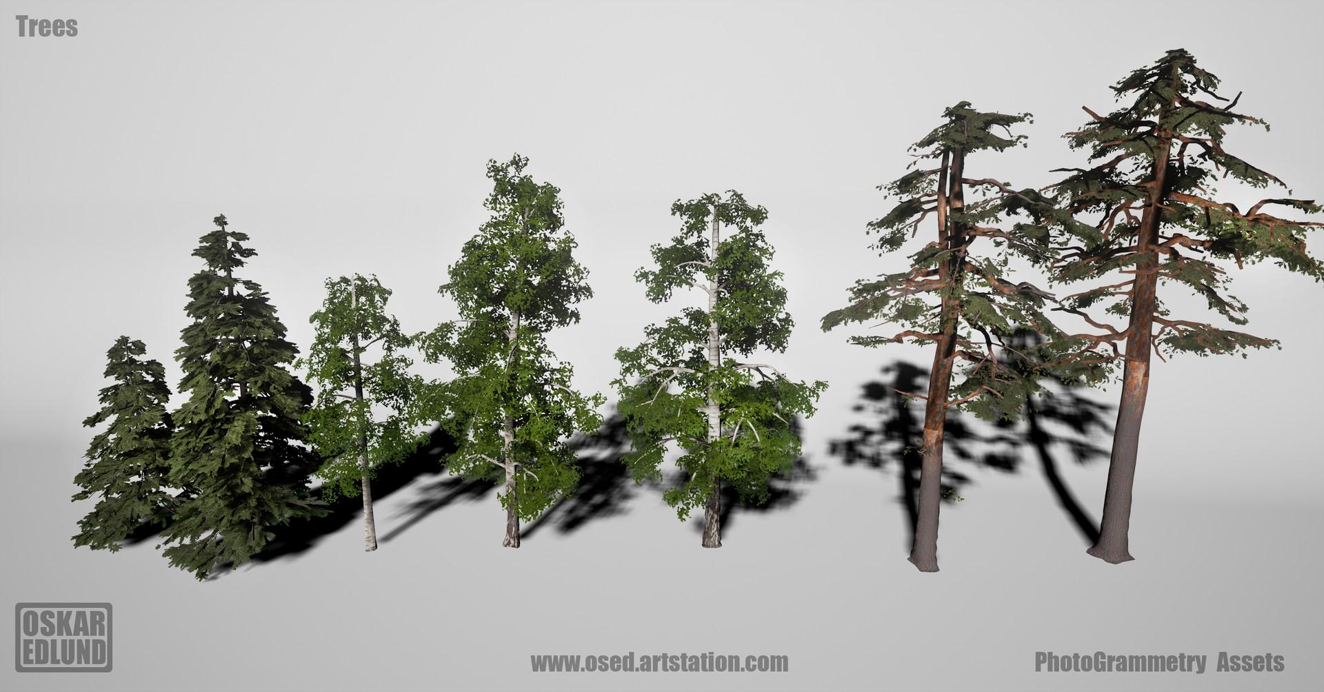 Oskar edlund trees