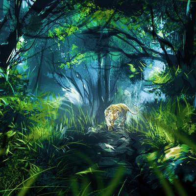 Kishore ghosh jungle06