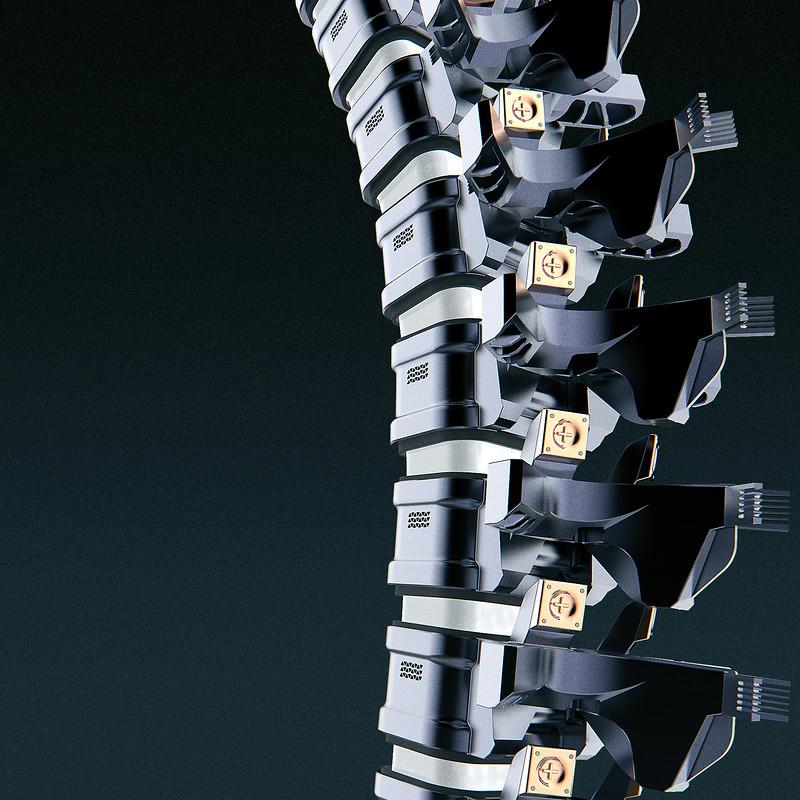 Mech vertebral column