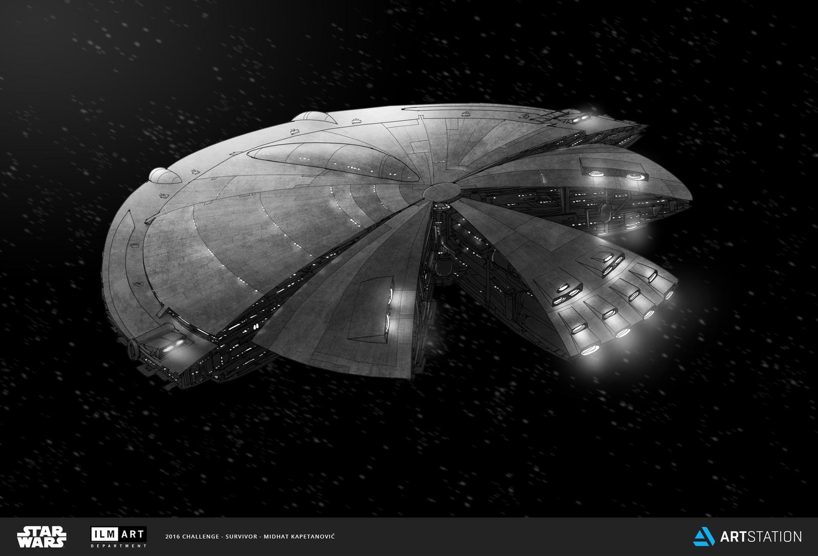 Danji capital ship concept