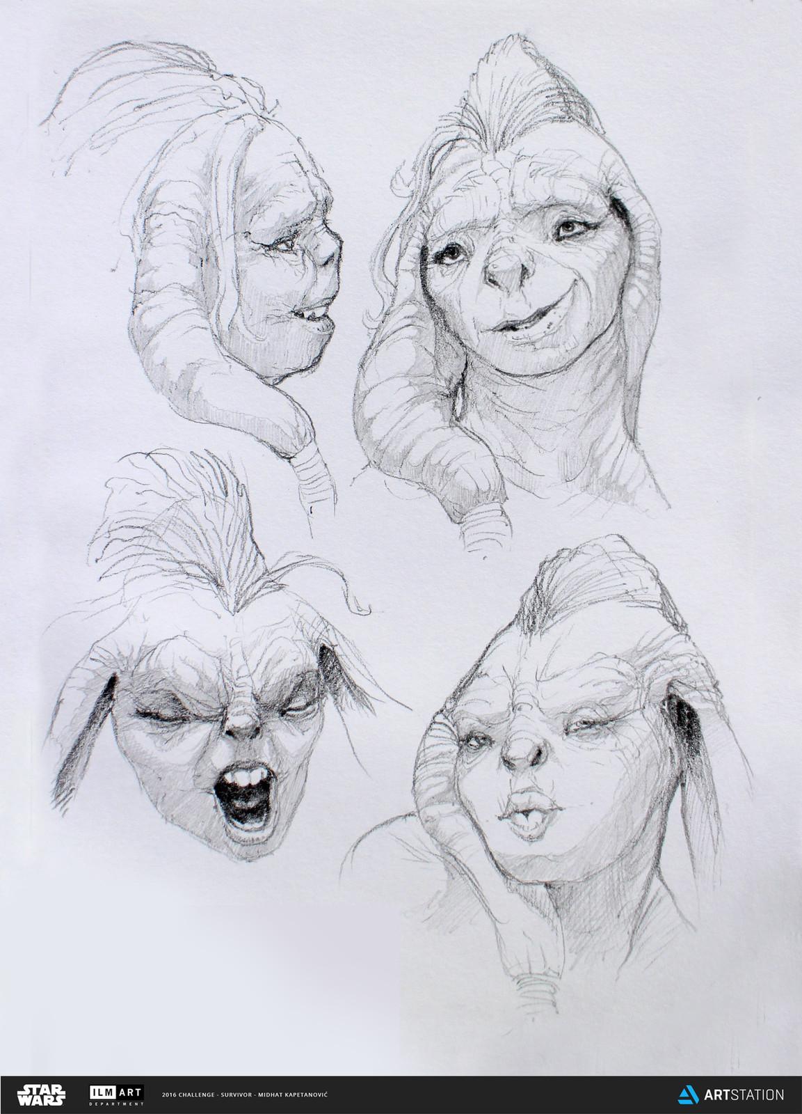 Swana facial expressions