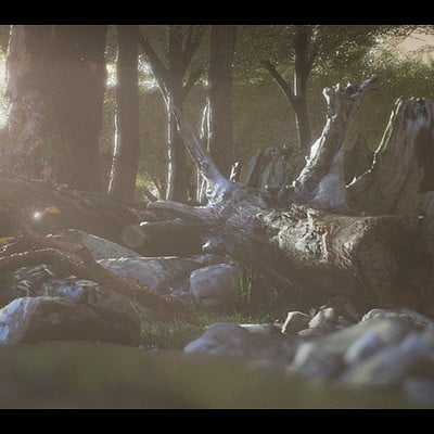 UE4 Forest Test