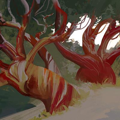 Hugo puzzuoli eucalyptus hpuzzuoli