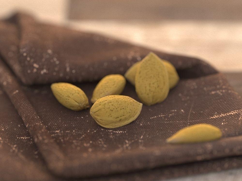Carlos faustino almond 10k polys 3d model max obj fbx mtl 2115584c bd82 4510 b973 d2b071038394