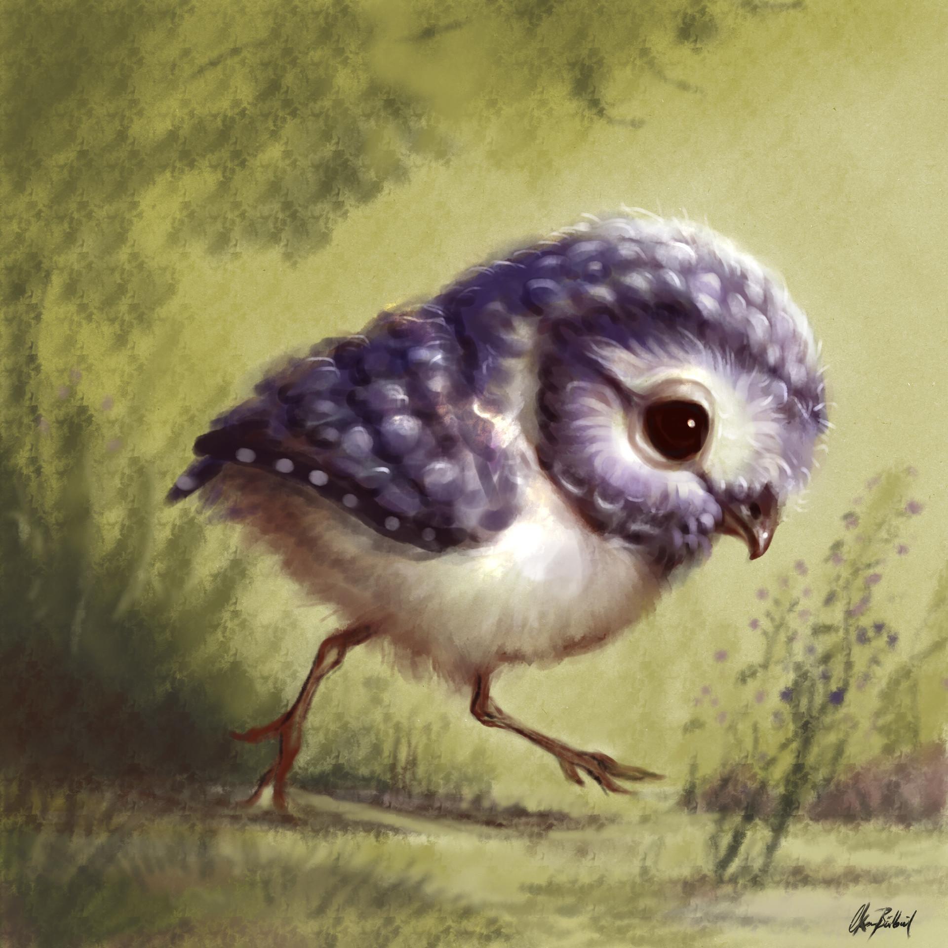 Okan bulbul blue owl 01