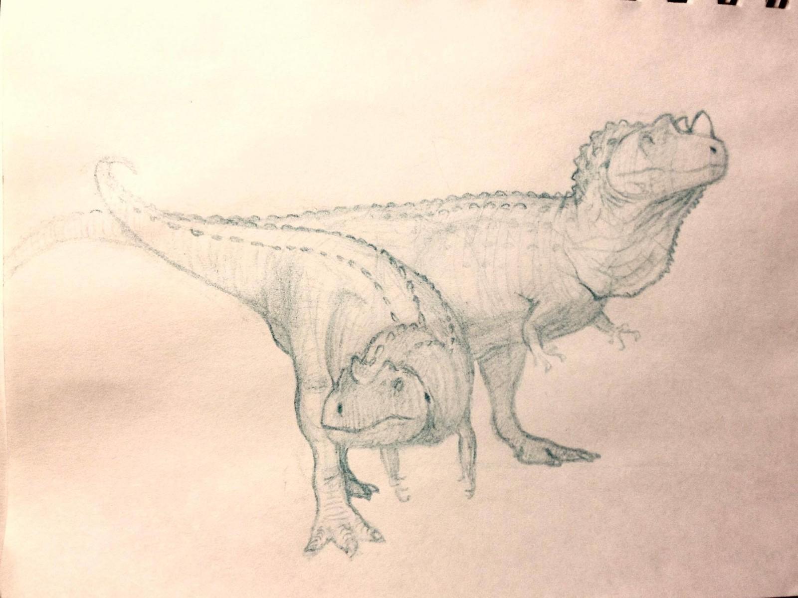 Ceratosaurus male & female