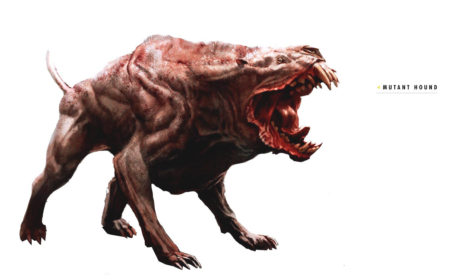 Ray lederer art of fo4 mutant hound
