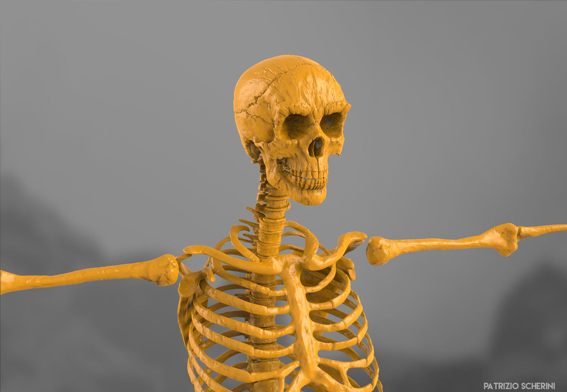 Patrizio scherini skeletro 09 front