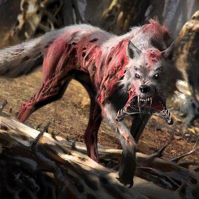 Jama jurabaev wolf