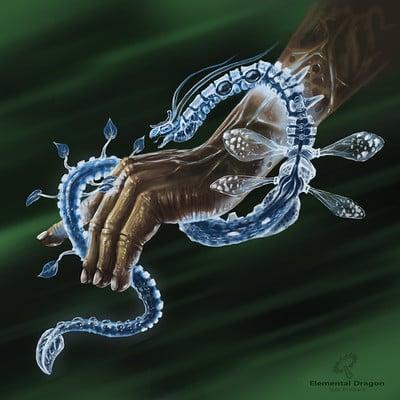 Igor puskaric elemental dragon squared