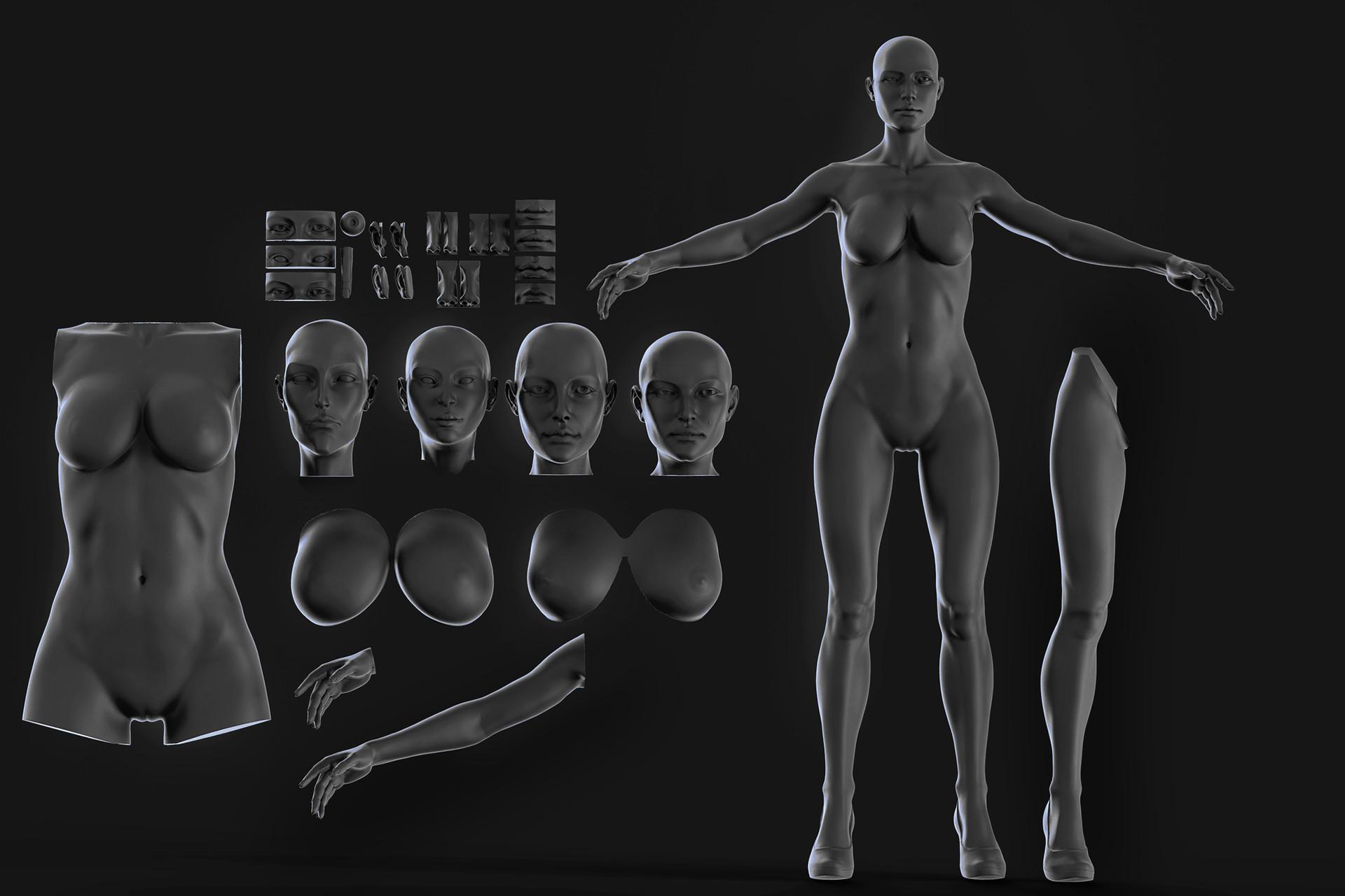 Yuriy romanyk anatomical 1 3x