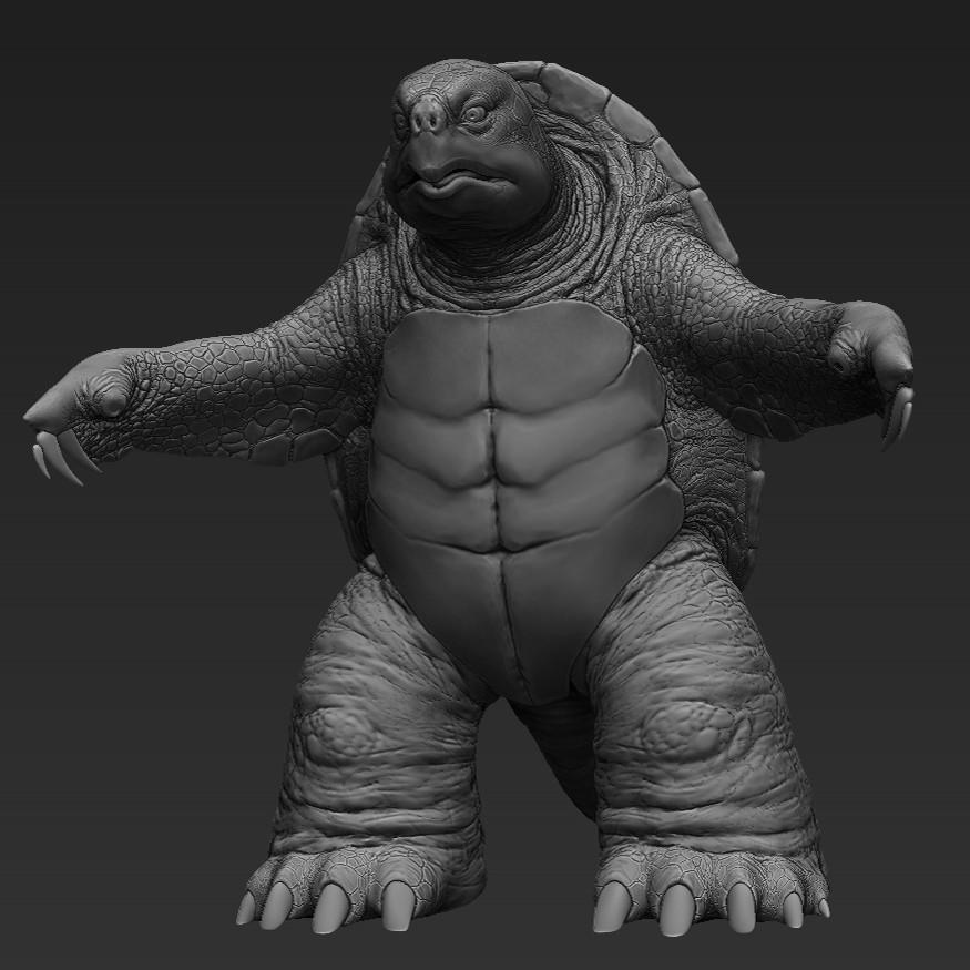 Martin krol turtle 02