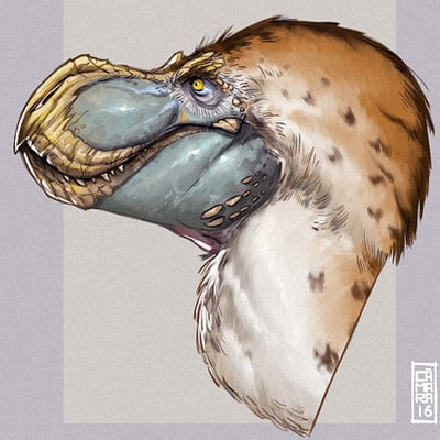 Alberto camara tyrannosaurid