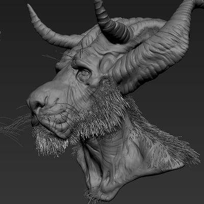 Alin bolcas horns4