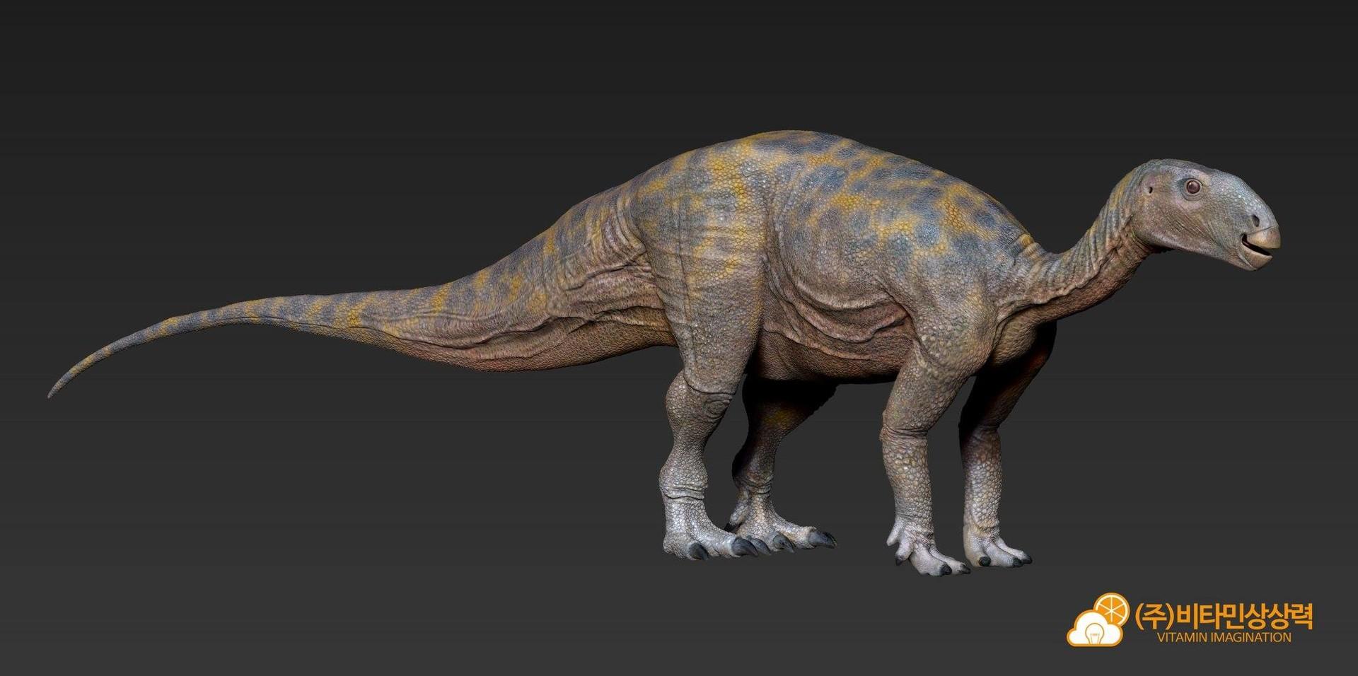 Jin kyeom kim tenontosaurus