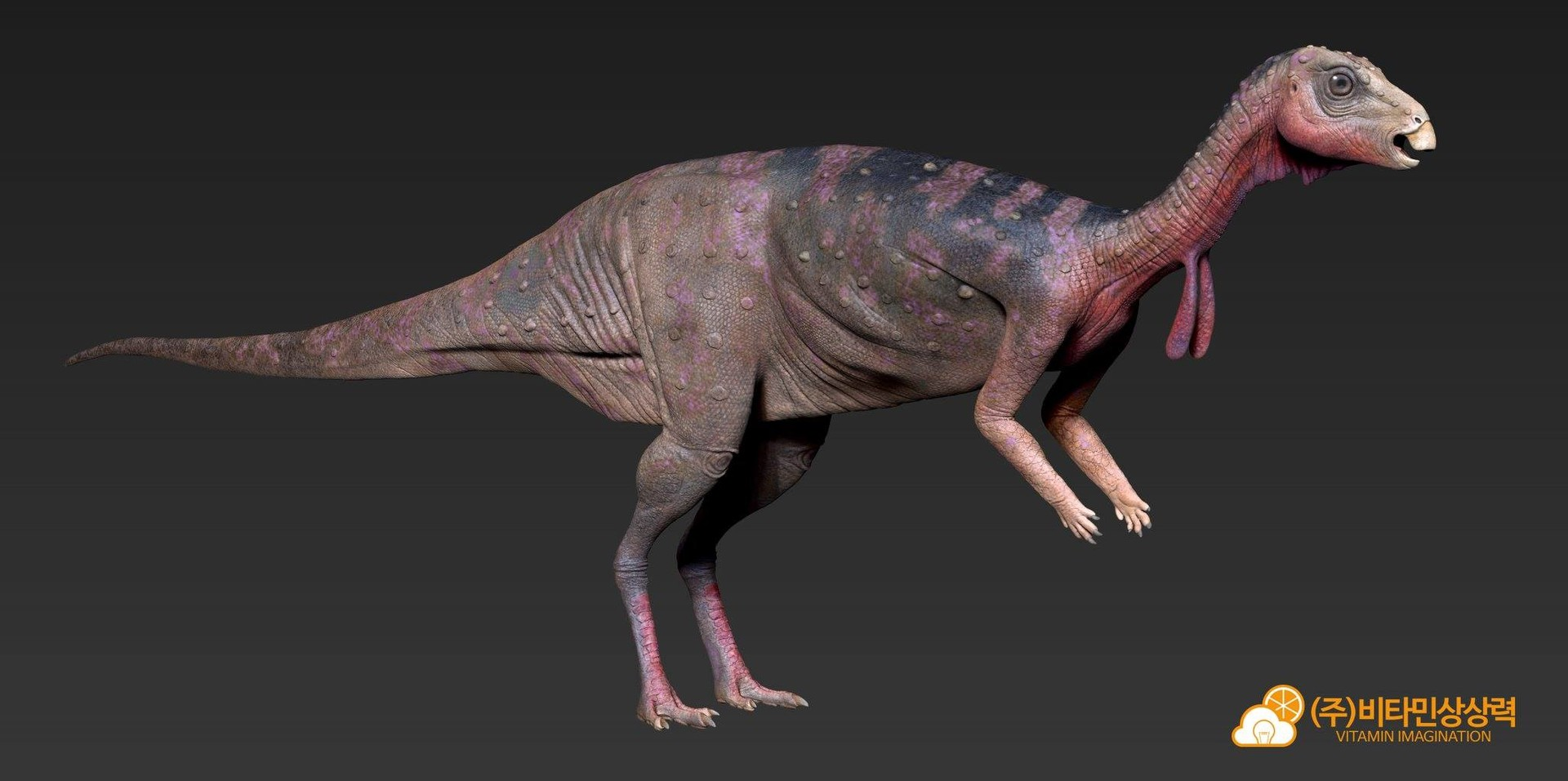 Jin kyeom kim dryosaurus