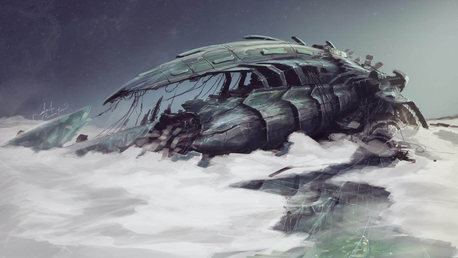 Crashed alien ship
