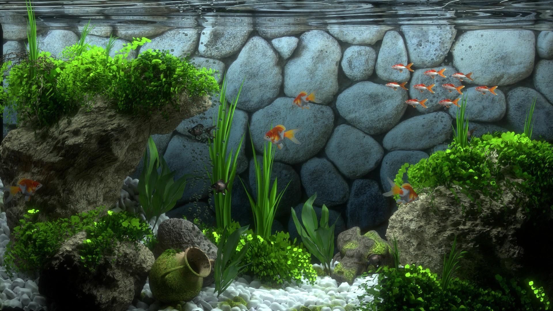 Piktron labs aquarium