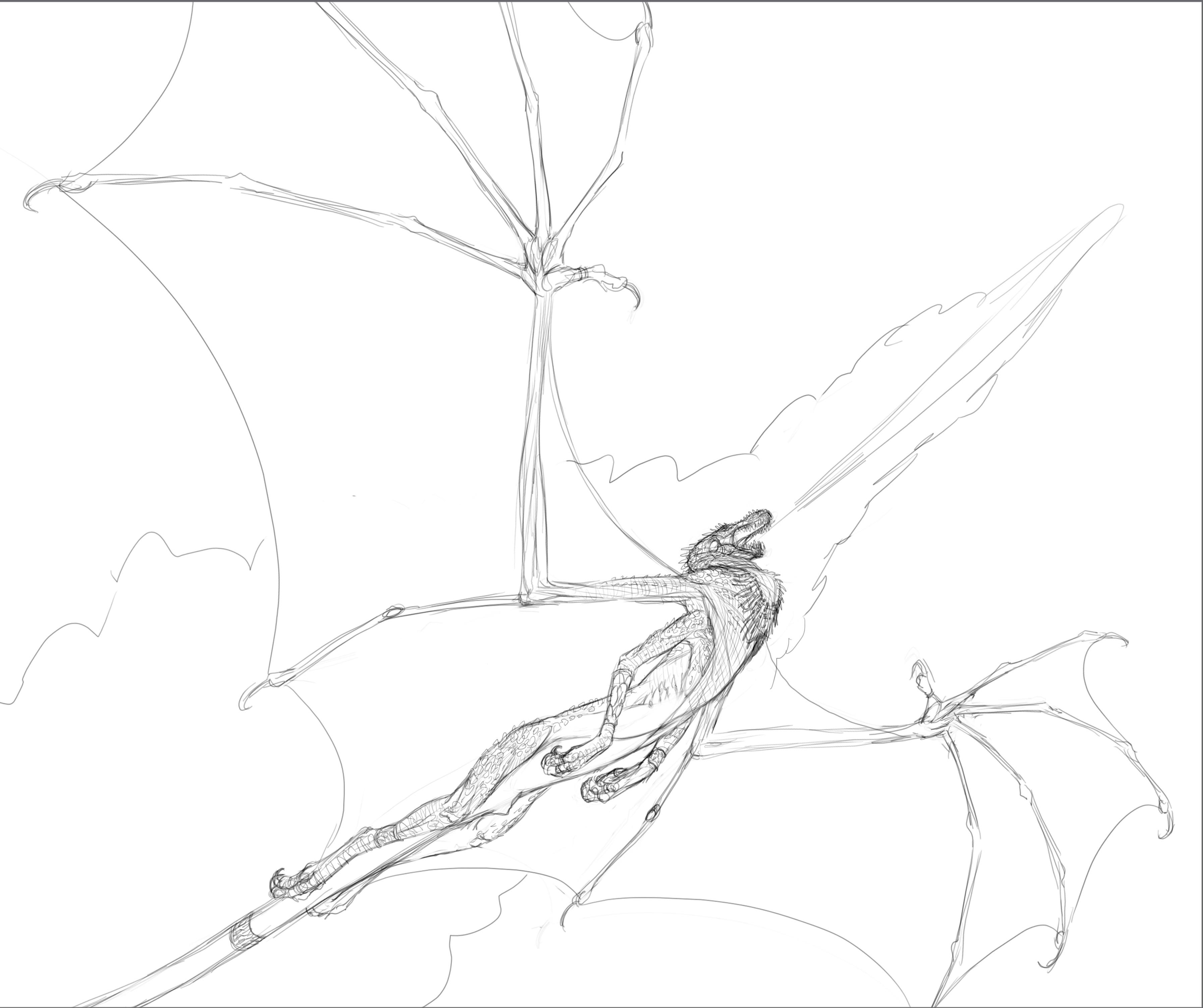 line drawing
