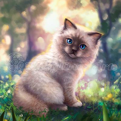 Vasilyna holod cat