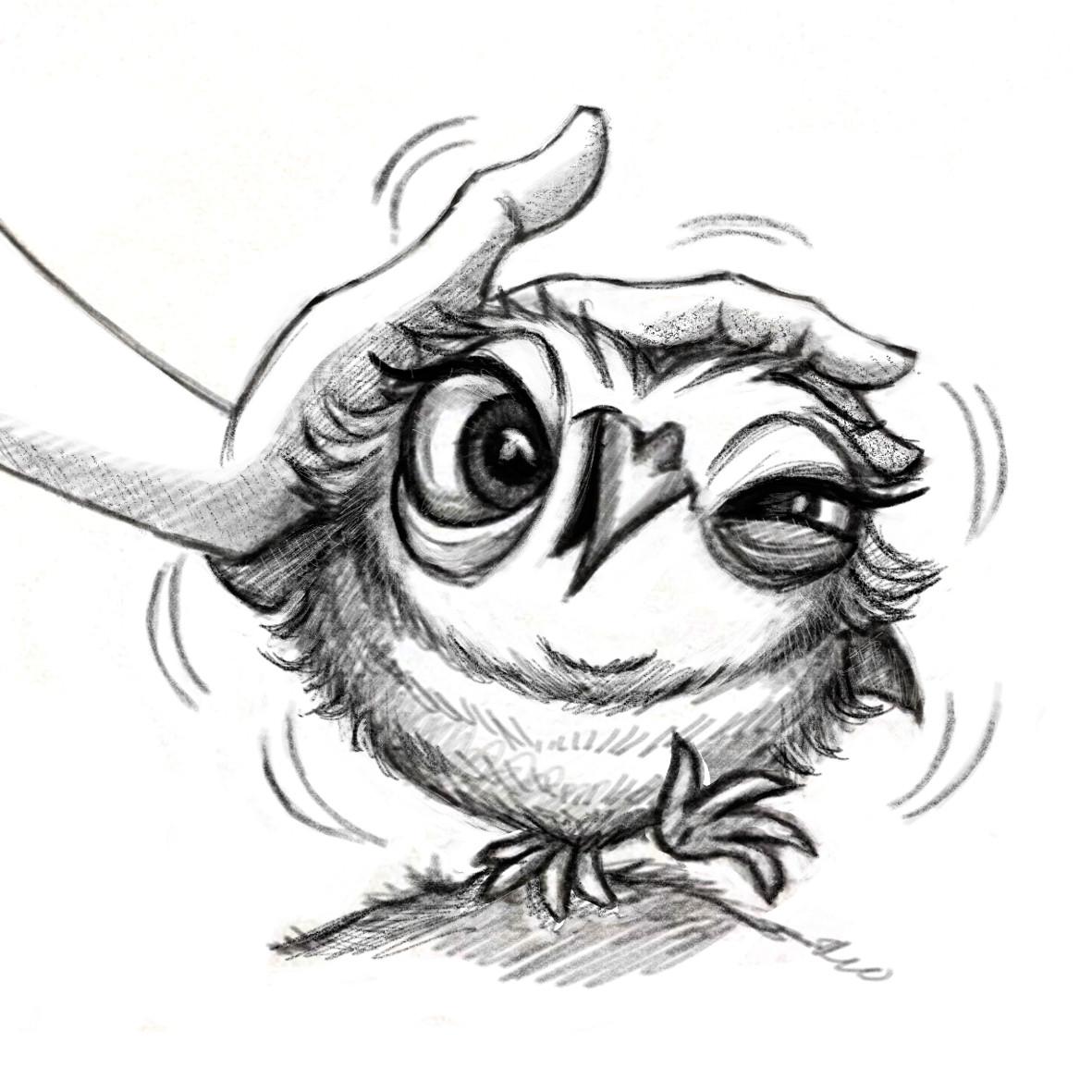 Patricia vasquez de velasco owl 2