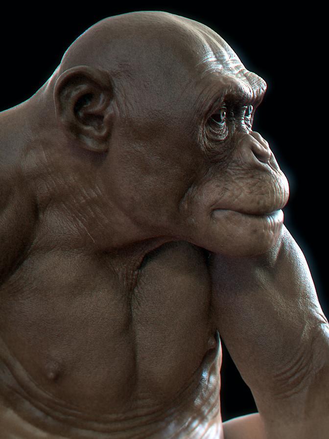Kris costa chimphdri b
