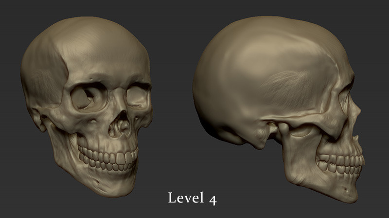 Kris costa skull level4