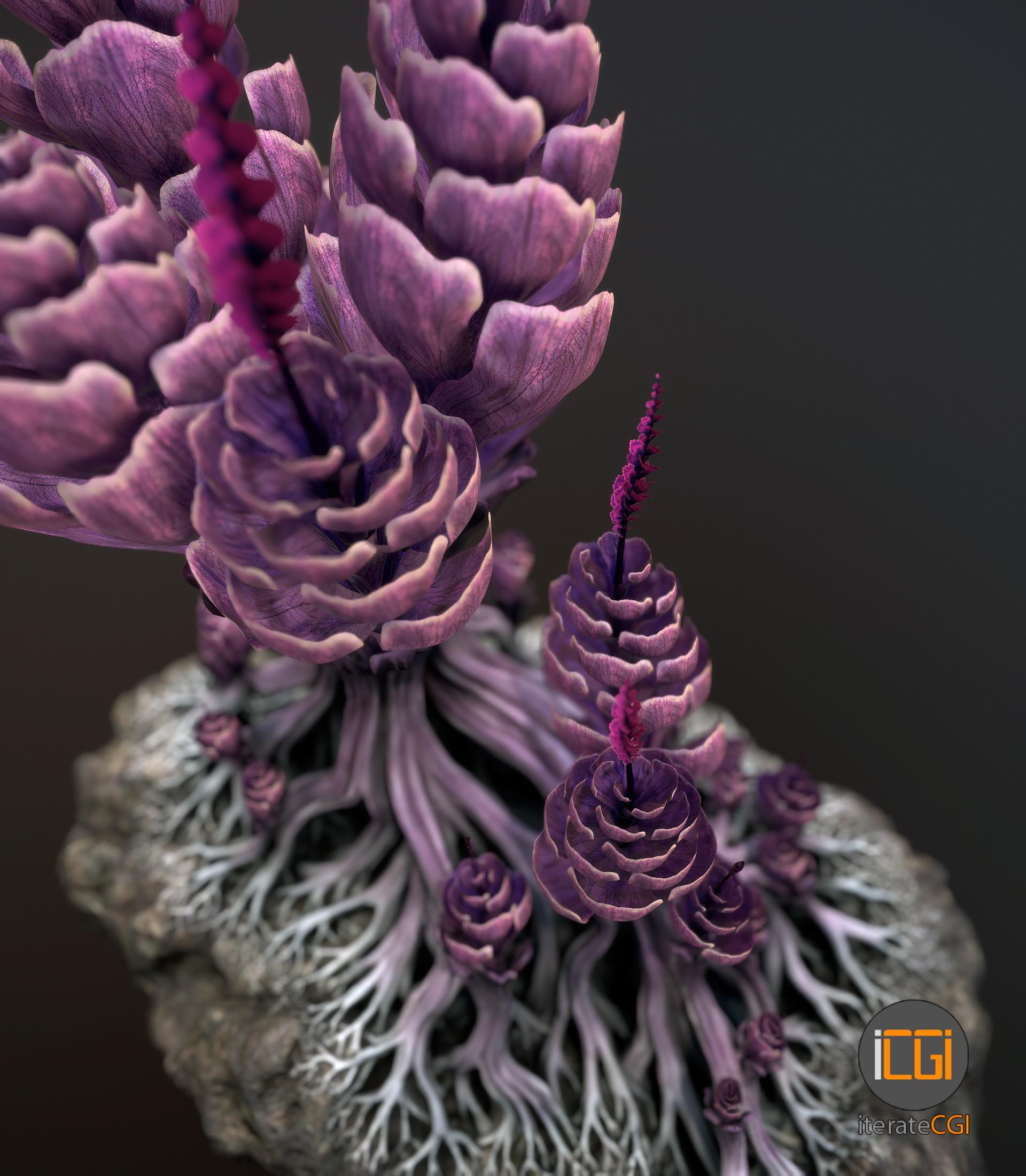 Johan de leenheer alien plantch6