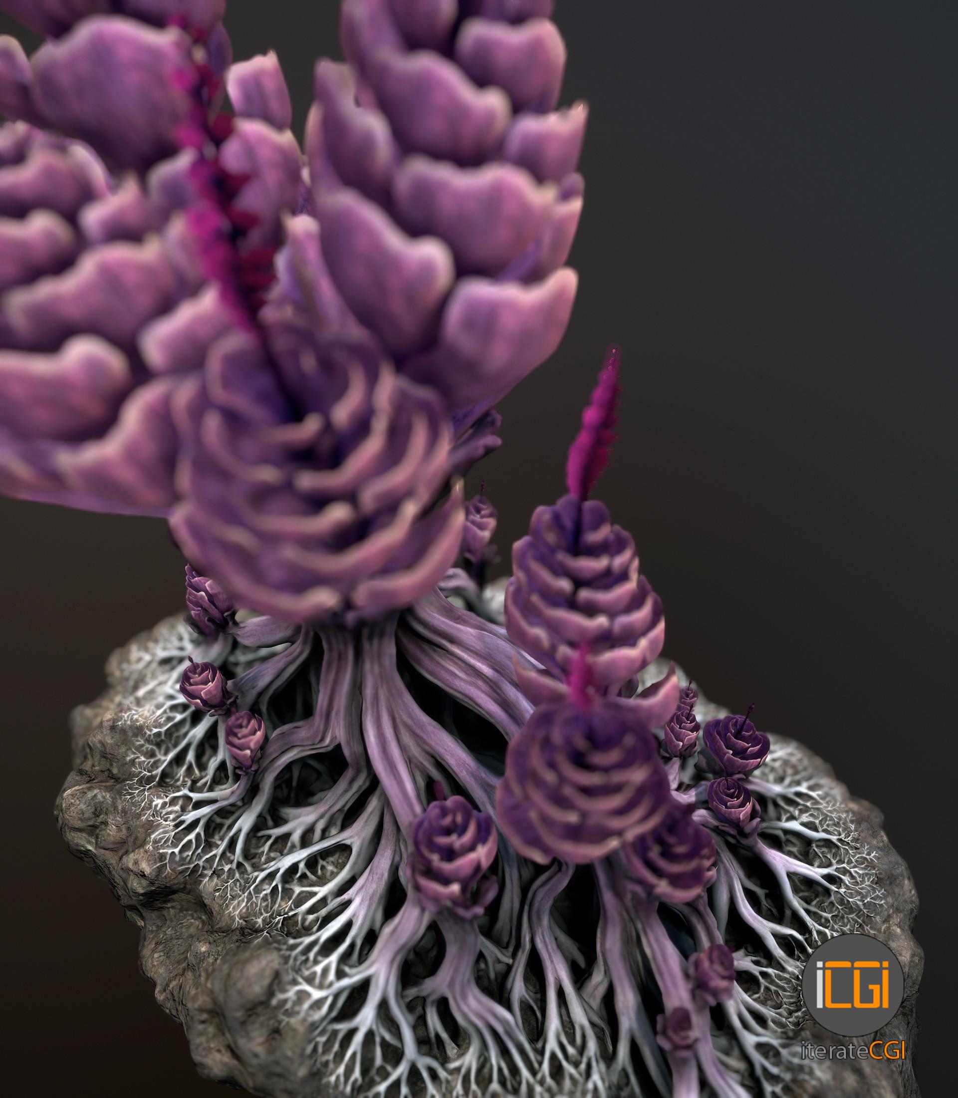 Johan de leenheer alien plantch7