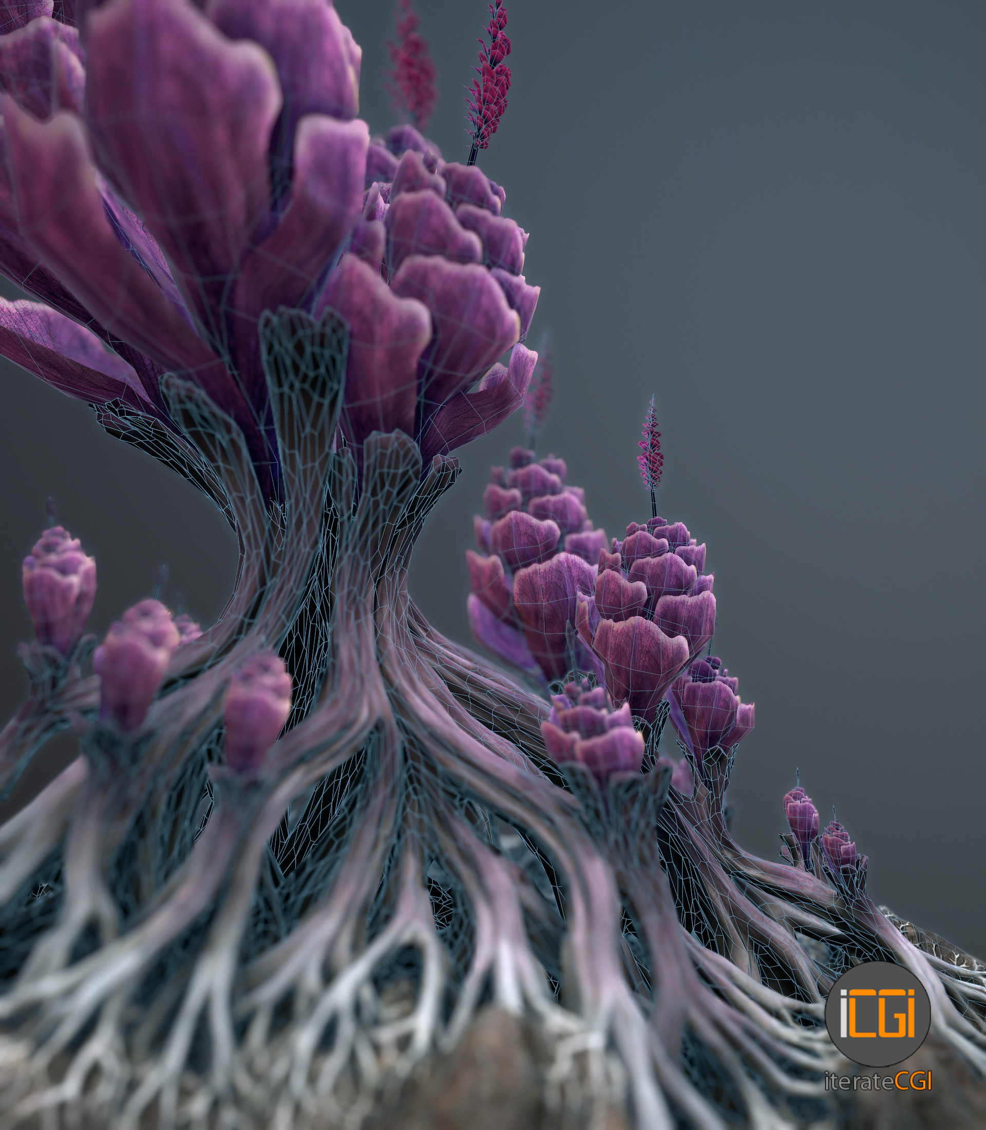 Johan de leenheer alien plantch wireframe3