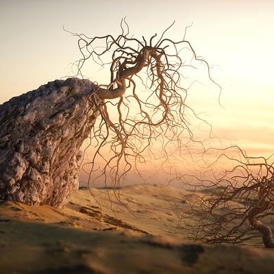 Christoph schindelar rdt rooty tree 01