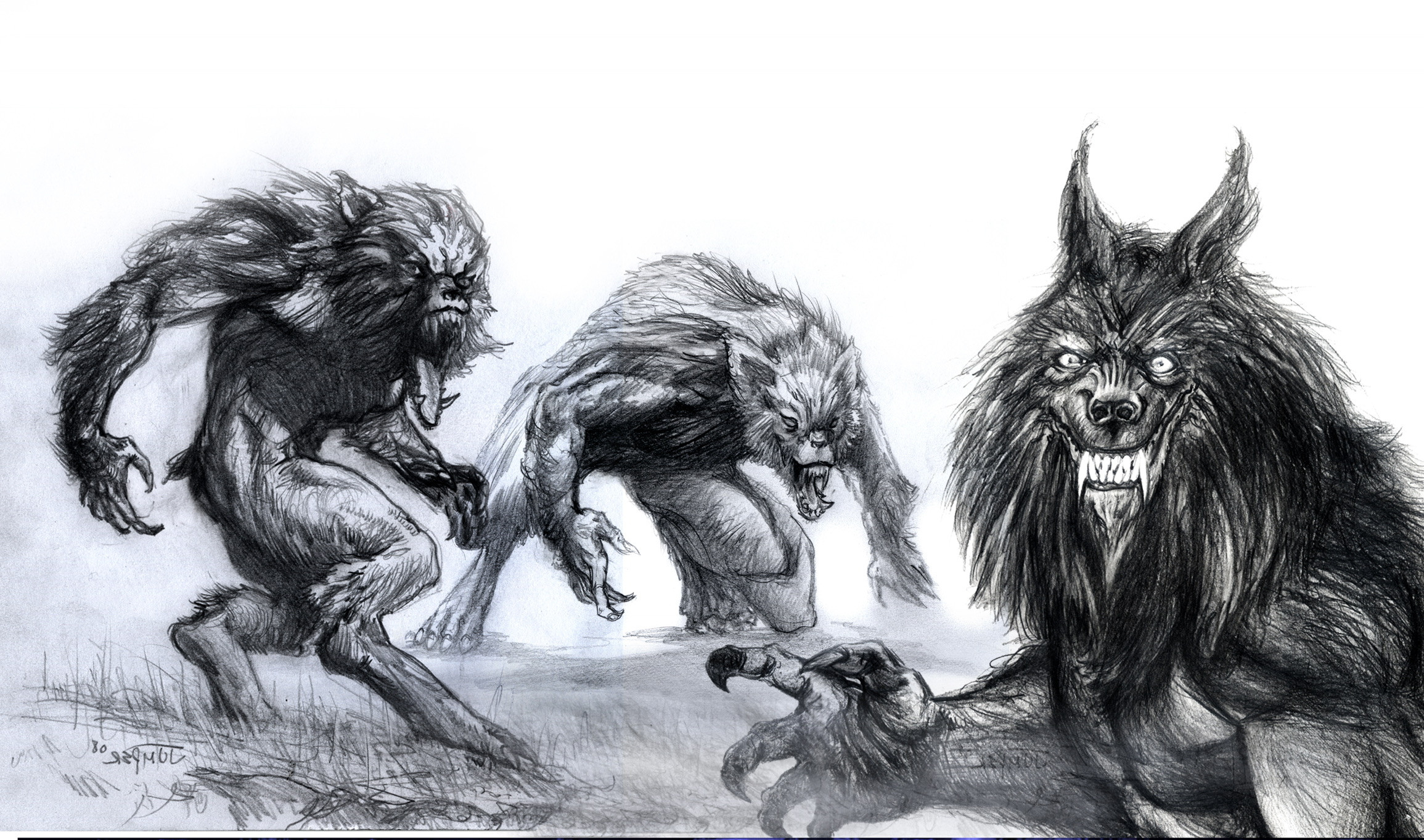 Werewolves at Night Sketch