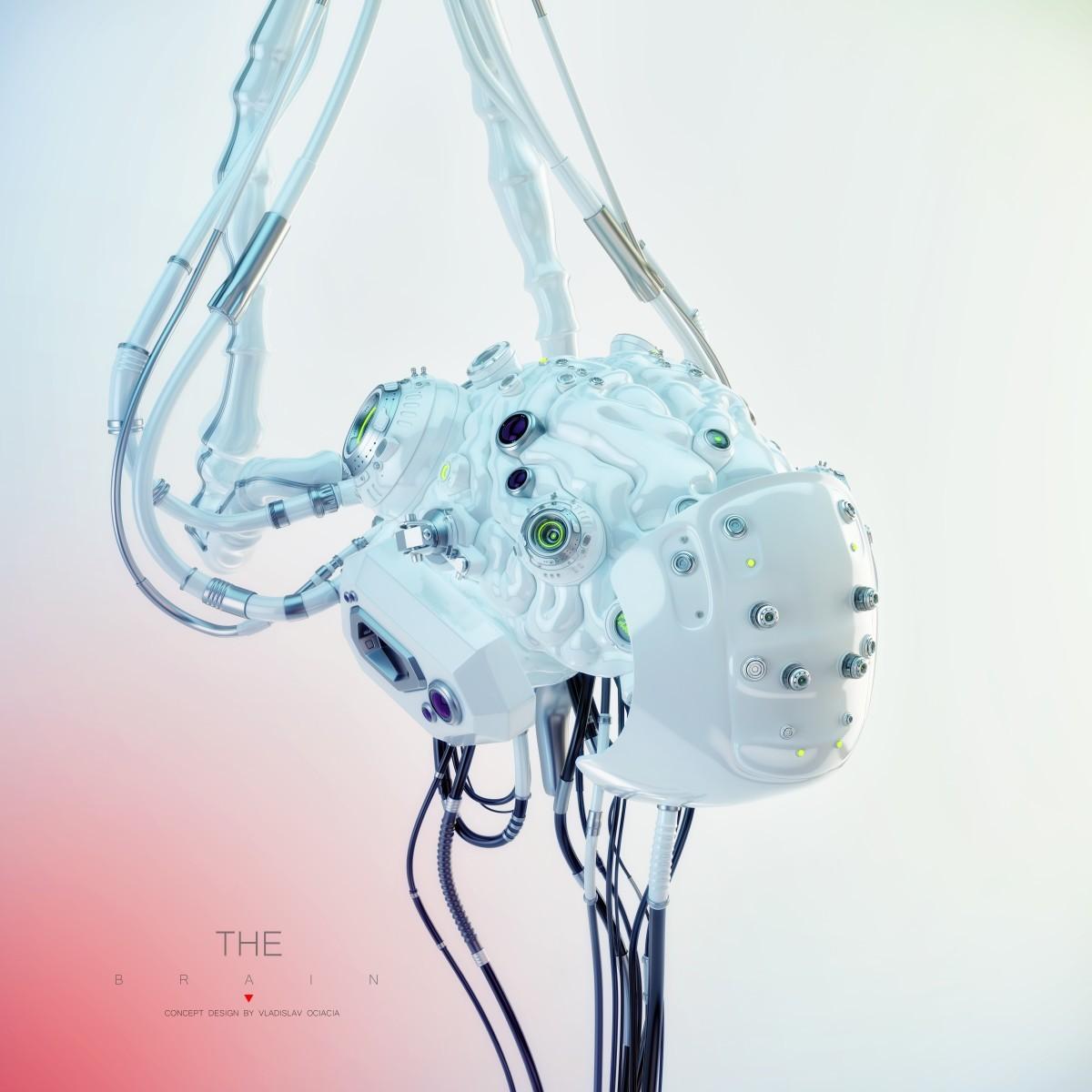 Vladislav ociacia robotic brain 10