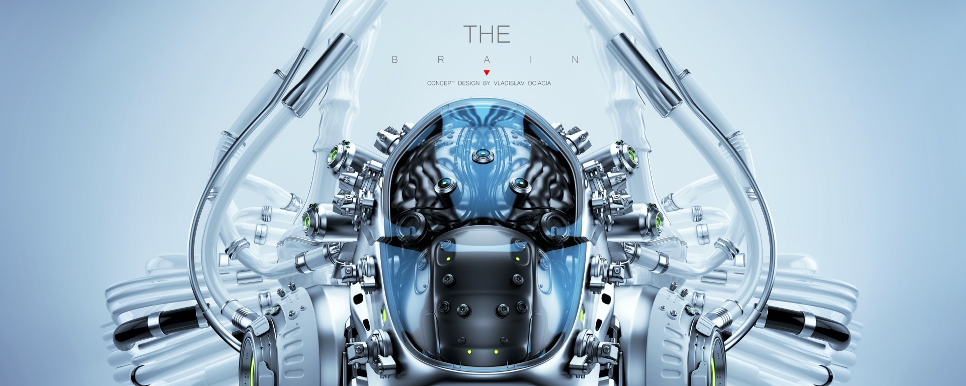 Vladislav ociacia robotic brain 1