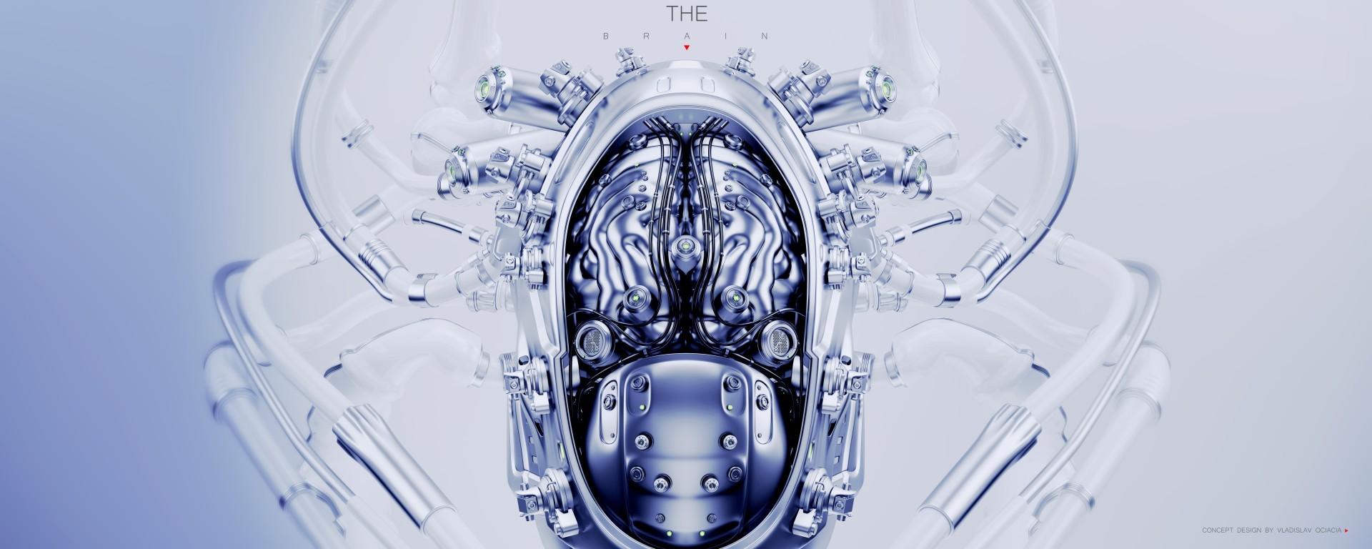 Vladislav ociacia robotic brain 2