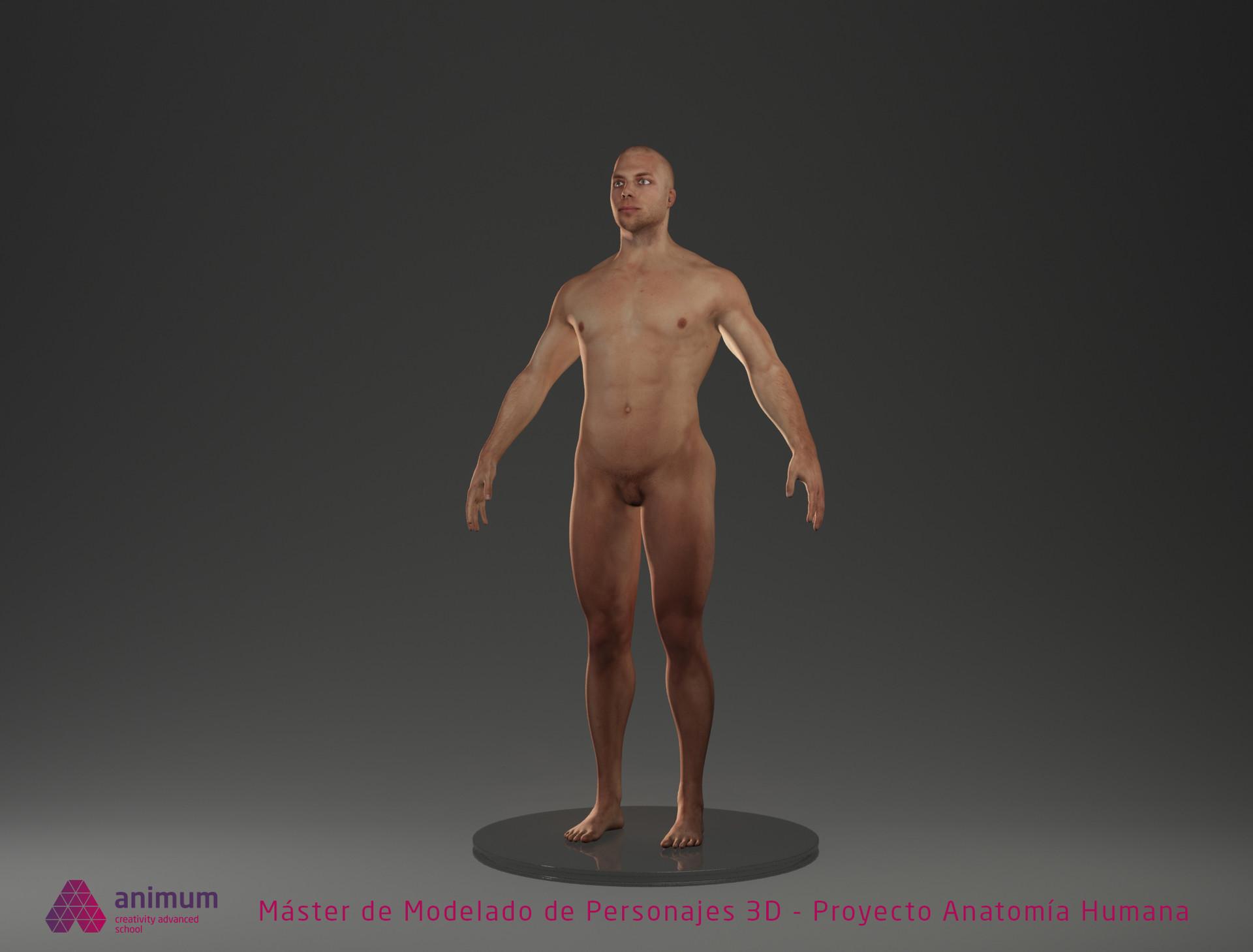 ArtStation - Proyecto anatomía humana, Marcos Lemus