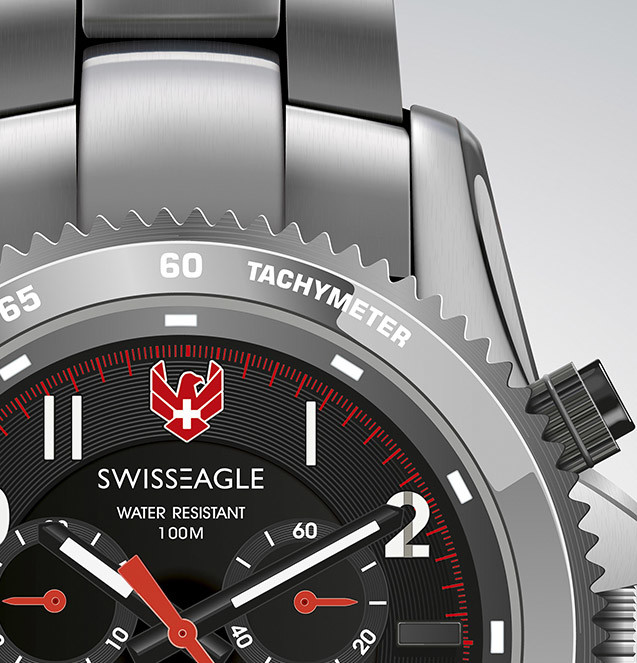 Rajesh sawant swiss eagle watch cover image