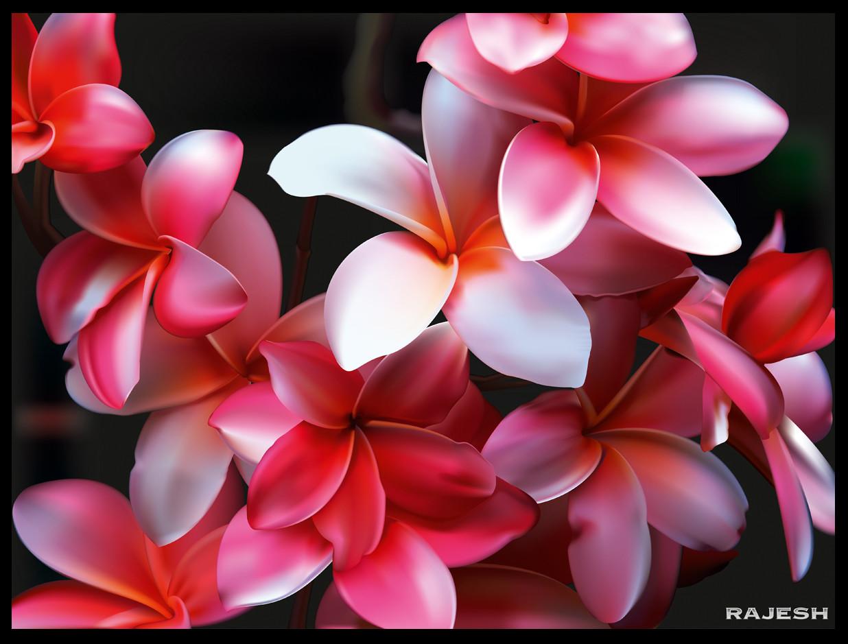 Rajesh sawant flowers