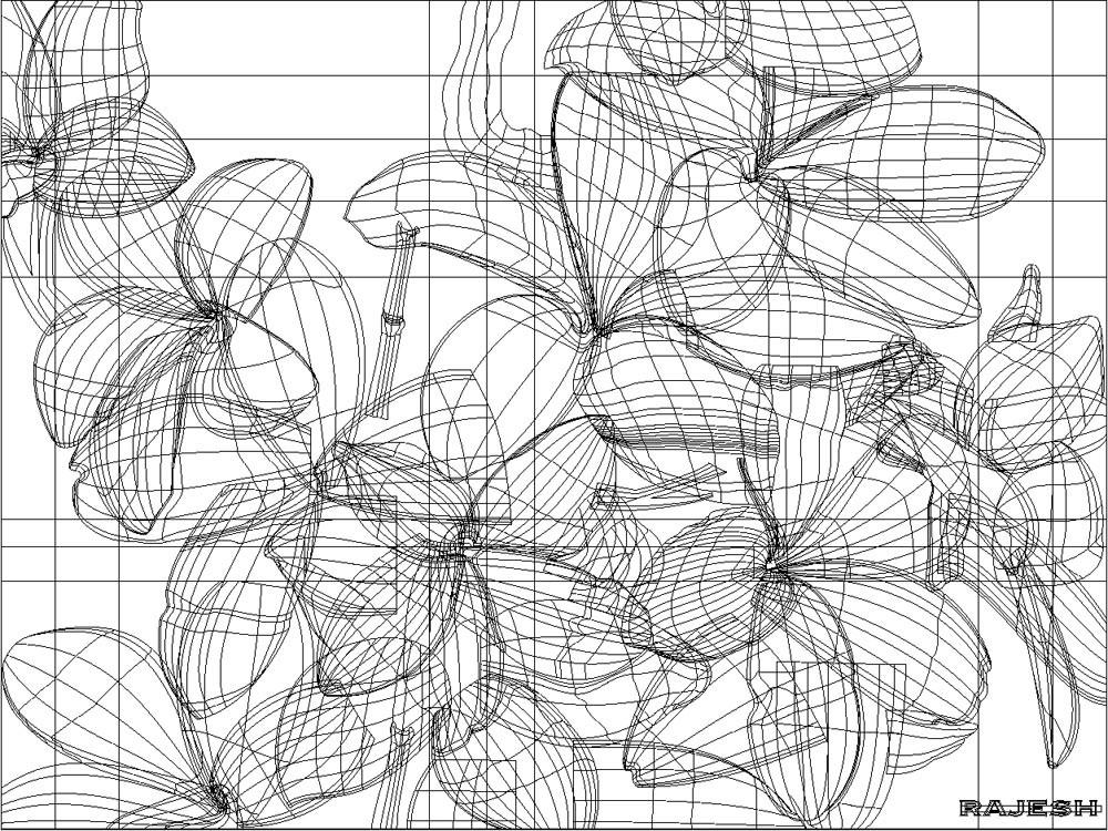 Rajesh sawant flowers wire frame