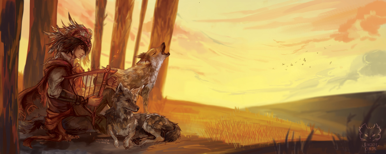 Kingdom Canidae: Coyote.