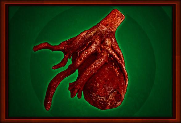Jeremy roland have a heart